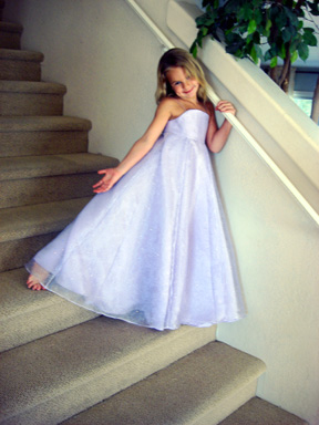 Lindsey strapless evening gown
